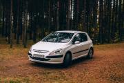 Автомалиновка Peugeot 307