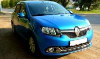 Автомалиновка Renault Sandero